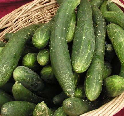 De kromme komkommer tijd frank leonard - De komkommers ...